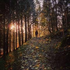 Autumns Child (Devendra Banhart)