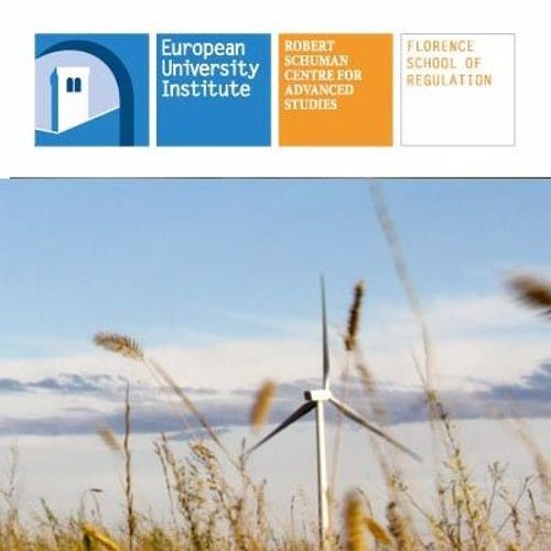 Revised Renewable Energy Directive │ Christopher Bremme & Thomas Schulz