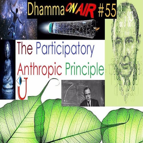 Dhamma On Air #55 Audio: The Participatory Anthropic Principle