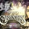'Jambalaya'. The Carpenters Tribute Band Barcelona Live show