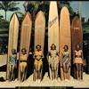 The Beach boys - Barbara Ann ( The Kobra Kai rmx)