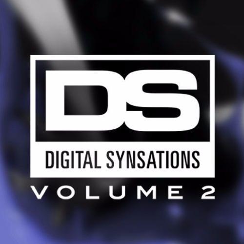 Digital Synsations Vol. 2 - Roland's Kingdom by Torley