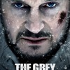 Into The Fray - The Grey By Hussain Tawfiq