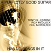 A perfectly good guitar has no songs in it