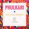 Phulkari x Do you know(Diljit)