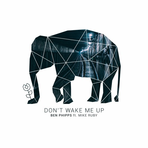 Don't Wake Me Up (ft. Mike Ruby)
