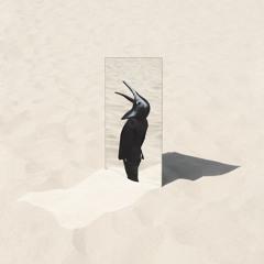 Penguin Cafe - Ricercar