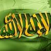 Download قلبك حنين يا نبي  وائل جسار نسخه الكليب Mp3