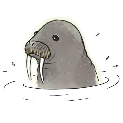 Alle Robben Mit