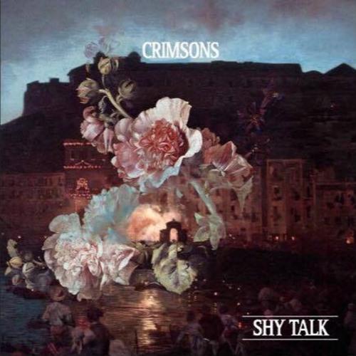 Shy Talk