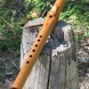 A minor pentatonic, Western Red Cedar flute. 432 Hz.
