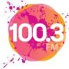 100.3 WNIC Detroit Big Boom Music 2017