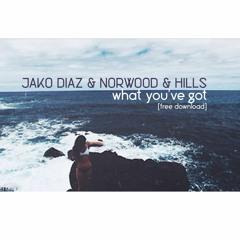 Jako Diaz & Norwood & Hills - What You've Got (Original Mix) [FREE DOWNLOAD]