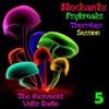 The Basement Voltz Radio - Psybreaks Show #5