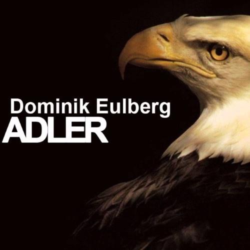 Dominik Eulberg - Adler (Hernan Lagos Remix)