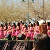 Polynesian Culture at the Arizona Aloha Festival