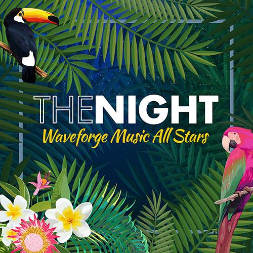 WMAS - The Night