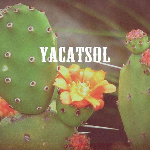 Yacatsol music (All)
