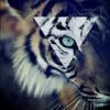 (Ft. Killer B) - Paranormal Vision (Prod. by Kid Ocean)