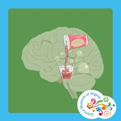 Question Your World - Does soda impact the brain?