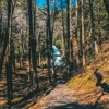 Walkthrough Tumbling Water Trail 5.1 Surround Sound