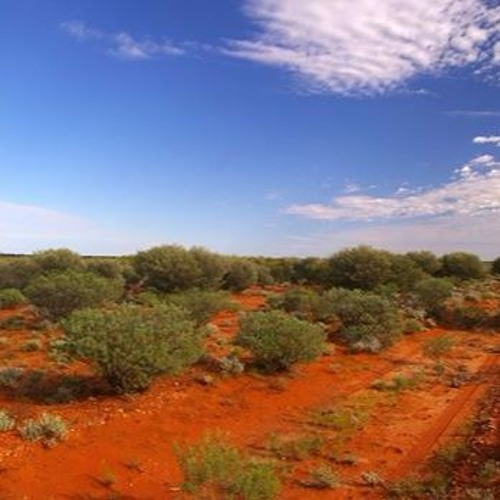 Presenting Maralinga: How artists are addressing our nuclear history?