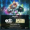 Download Electric Forest / EDC Vegas Open Casting Call 2017 Mp3
