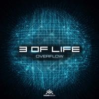 3 Of Life - Overflow