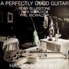 A Perfectly Good Guitar Has No Songs In It - ft Phil McWalter Tony Bluestone Rick Medlock
