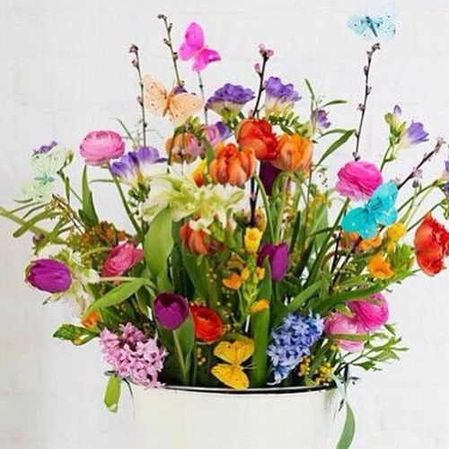 A Terapia Floral e as Essências Florais