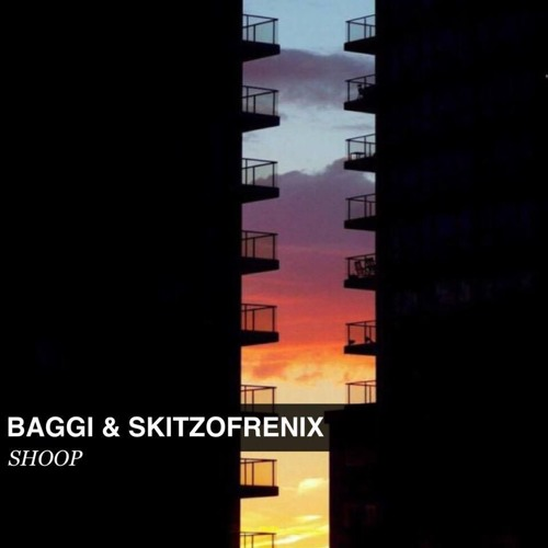 BAGGI & SKITZOFRENIX - SHOOP