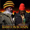 Babylon Burning (Dub Mix)