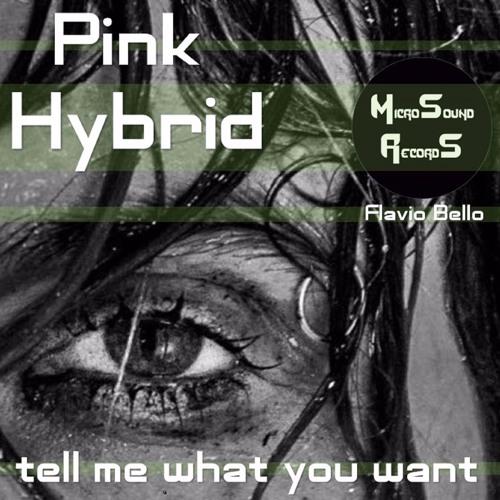 PINK HYBRID & Flavio Bello - Tell Me What You Want(original Mix)