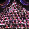 Wes Walterman CEO & Music Director of The Singing Christmas Tree (5/4/17)