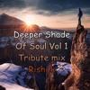 Deeper Shade Of Soul Vol 1 ( Tribute mix Rishi K )