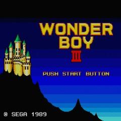 Wonder Boy III - Last Dungeon (FDS)