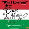 WHY I LOVE YOU (Spanish Version)