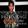 Download Trey Songz - Nobody Else But You (GingerBeats Remix) Mp3