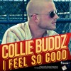 COLLIE BUDDZ - I FEEL SO GOOD - LOUD CITY MUSIC