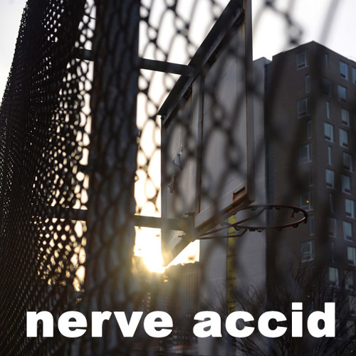 Nerve Accid - A Hole To Jump In (LANDR Beatific Mix v20)