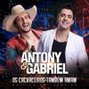 02 Antony e Gabriel - Bonito pra você