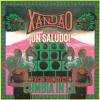 ¡Un Saludo! Mexican Soundsystem Cumbia in LA - sample2