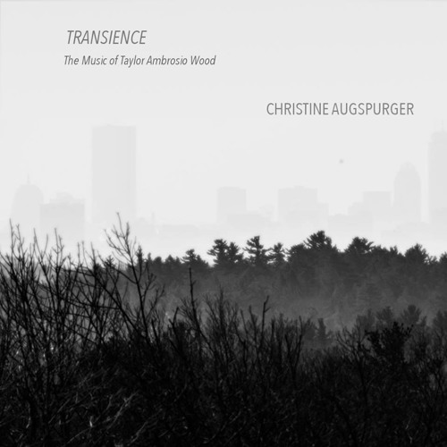 """Transience  for Percussion and Electronics"