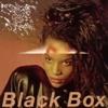 Fall Into My Love - Black Box (Cover)