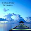 Dubsydroid - Memories