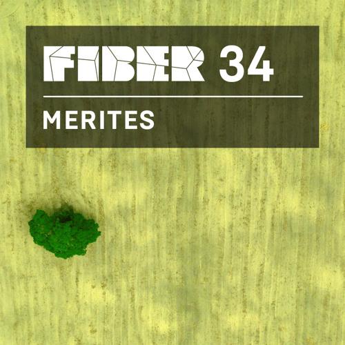 FIBER Podcast 34 - Merites