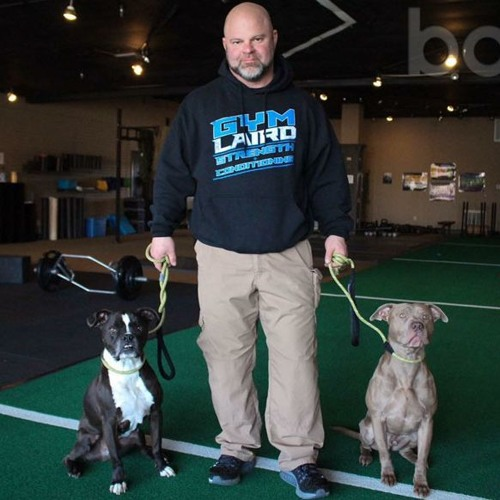 GYMLAIRD 21 - Health and longevity for canines
