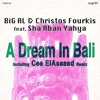 BiG AL & Christos Fourkis Feat. Sha'Aban Yahya - A Dream In Bali (Cee El Assaad Mix)- King Street