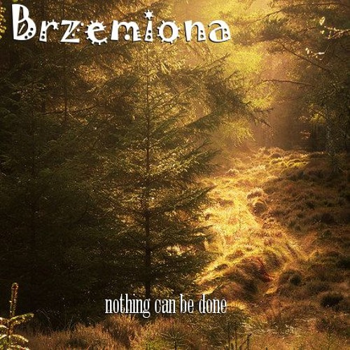 Nothing Can Be Done by Brzemiona