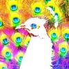 Reversed Peacock